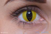 ColourVUE Crazy Occhio di Gatto (2 pz) - Lente trimestrale colorata